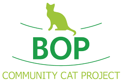 Bay of Plenty Community Cat Project